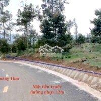Bán đất vườn Thị trấn Đạ Mri- 3000m2giá 2 tỷ LH: 0918336838