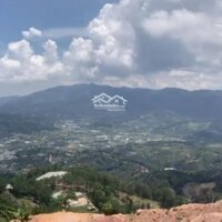 Cần cho thuê đất và nhà view đẹp thích hợp kinh doanh homestay LH: 0393442427