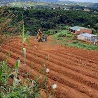 Đất vườn giá rẻ gần Đà Lạt, Lâm Đồng LH: 0972083579