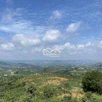 Đất Nền Đông Thanh Đà Lạt dt 500m2 thổ cư LH: 0901273939