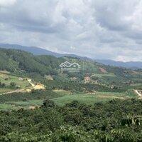 Bán đất ven Đà Lạt, chỉ 800km, từ 391trlô, có thồ cư,ngay trung tâm thị trấn Nam Hà Lâm Hà LH: 0938929381