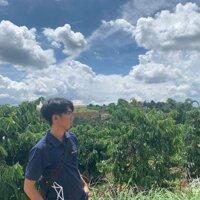 Đất vườn giá rẻ gần Nam Ban, 11785m2 có 200m2 thổ cư, mặt tiền bê tông, ô tô vào tới đất, view đẹp LH: 0374305695
