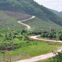 Đất rừng sản xuất lợi nhuận cao, tăng vốn 3 - 8 lần trong 2 - 5 năm LH: 0375503884