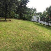 Tôi cần bán lô đất Flamingo Đại Lải, diện tích 366m2 giá 7,5 tỷ LH 0939668688