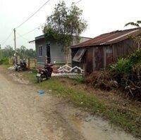 Chính chủ cần bán nhà nát, đất trồng cây lâu năm LH: 0968035045