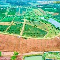 chi tiết Đất nghỉ dưỡng ngay trung tâm xã LỘC AN 330tr125m LH: 0985310379