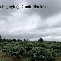 chi tiết -----Đất nông nghiệp 2 mặt tiền hẻm----- LH: 0981888991