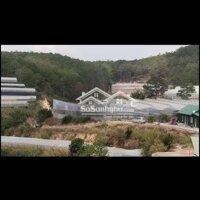 chi tiết Cần bán lô đất đầu tư LH: 0981133901