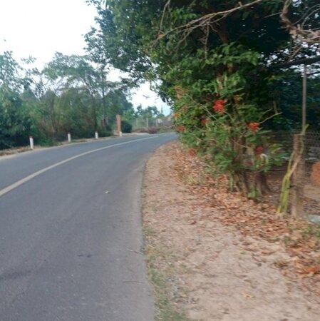 Bán  đất  Mặt  Tiền  đường  Nhựa  270M Tại  Tỉnh  Lộ  600A, Xã  Phú  An,  Huyện  Tân  Phú,  đồng  Nai - Ảnh 2