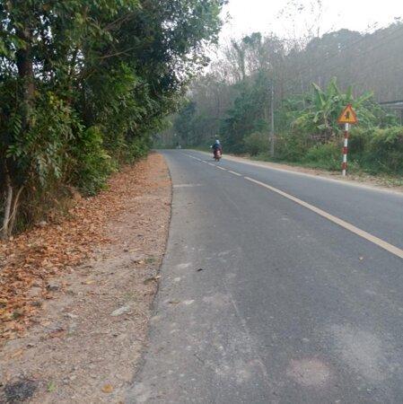 Bán  đất  Mặt  Tiền  đường  Nhựa  270M Tại  Tỉnh  Lộ  600A, Xã  Phú  An,  Huyện  Tân  Phú,  đồng  Nai - Ảnh 1