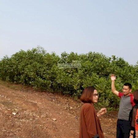 Chuyển Nhượng 1Ha-100Ha Đất Công Nghiệp Tại Samsung Phổ Yên Thái Nguyên Giá Mềm 0936746555- Ảnh 3