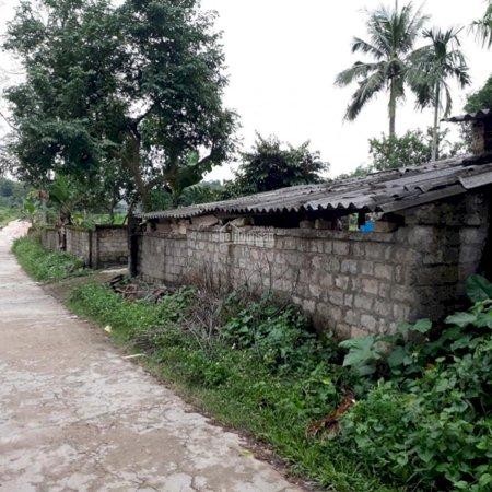 Bán Gấp Nhà Đất Xóm Chanh, Thịnh Đức Thái Nguyên - 3026M2- Ảnh 3