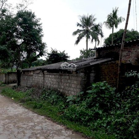 Bán Gấp Nhà Đất Xóm Chanh, Thịnh Đức Thái Nguyên - 3026M2- Ảnh 6