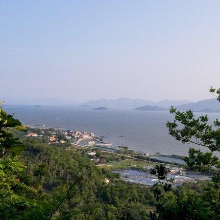 Bán gấp hơn 2ha rẫy Hang Dơi - Ninh Phú - GẦN BIỂN- Ảnh 1