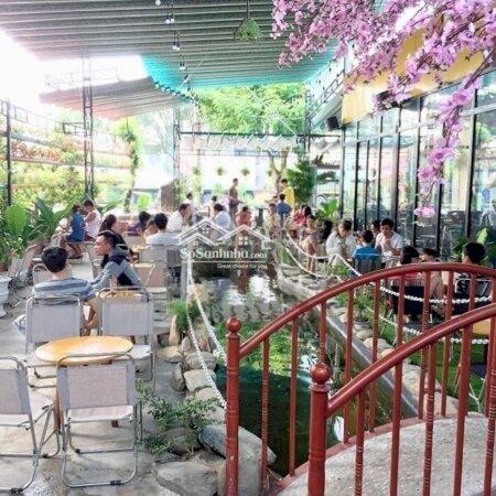 Cần Sang Nhượng Quán Cafe Mới Hoạt Động 8 Tháng- Ảnh 3