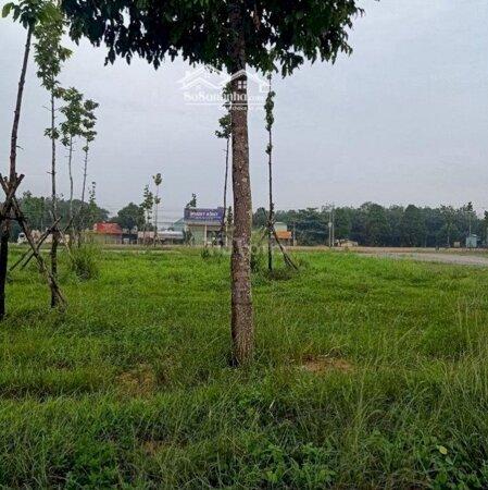Bán Đất Trung Tâm Hành Chính Huyện Bàu Bàng. Bd- Ảnh 3