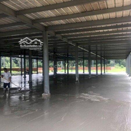 Nhà Xưởng 17000M2 - Nhà Máy Sx Găng Tay Y Tế- Ảnh 2