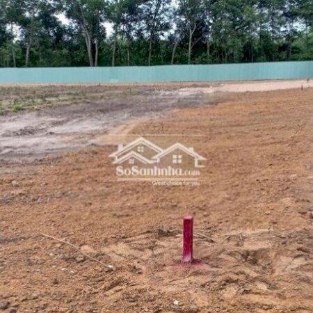 Đất Thổ Cư Huyện Bàu Bàng 225M²- Ảnh 3