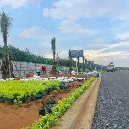 Cần Tiền Bán Gấp Lô Đất Ở Phước Tân - Gần Khu Du Lịch Sơn Tiên - Biên Hoà - Đồng Nai- Ảnh 7