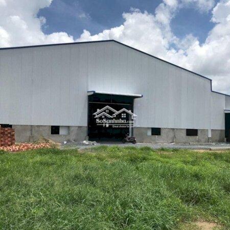 Cho Thuê Nhà Xuởng Huyện Bến Lức 1.600M²- Ảnh 3