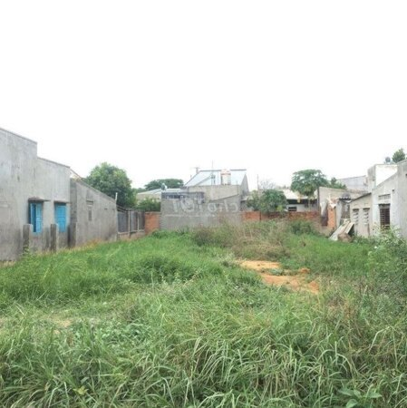 Đất Thành Phố Phan Rang-Tháp Chàm 177M²- Ảnh 2