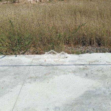 Đất Thổ Cư Phong Nẫm, Phan Thiết, Bình Thuận- Ảnh 2