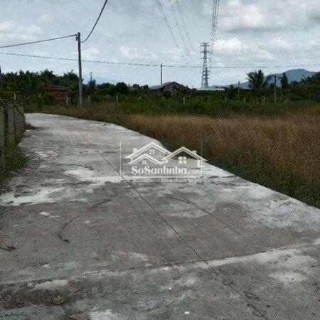 Đất Thổ Cư Phong Nẫm, Phan Thiết, Bình Thuận- Ảnh 9