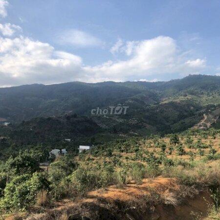 Đất Chính Chủ Cần Bán 7986M2 Đông Thanh, Lâm Hà- Ảnh 1