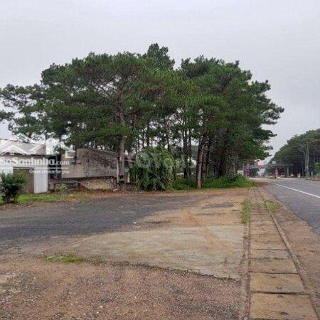 Cần Cho Thuê Nhà 650M2, Ngay Trạm Thu Phí Gia Trun- Ảnh 1