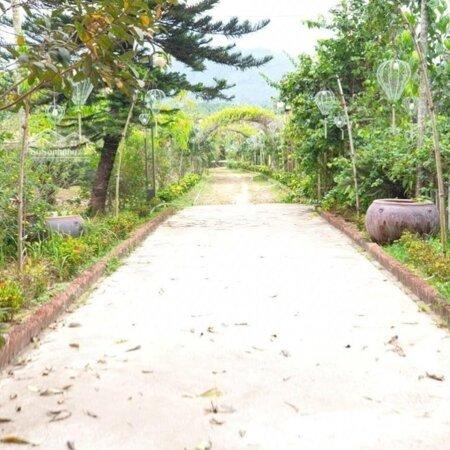 Cần Bán Lại Trang Trại Nghỉ Dưỡng Tại Xã Hòa Ninh Dưới Chân Núi Bà Nà Có Gần 1000M2 Đất Ở Giá Tốt- Ảnh 2
