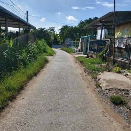 Cần sang 2 lô xây trọ đẹp ngay kcn Tân Hương - 430m2 giá tốt, mt Kinh doanh gần quốc lộ 1A- Ảnh 3