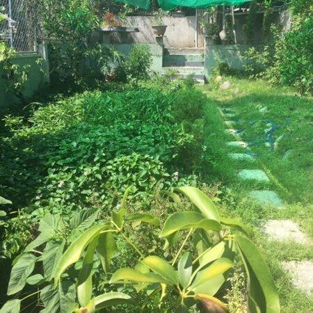 Nhà vườn Villa 2 tâng sân vườn 300m2 gần trường Cô Nuôi- Ảnh 1
