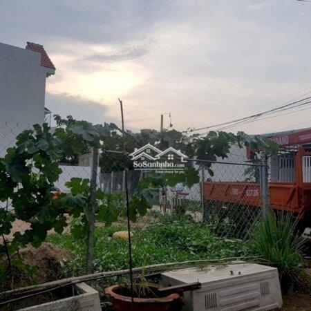 Đất Sổ Đỏ 140M2 Huỳnh Thị Mài Hóc Môn- Ảnh 3