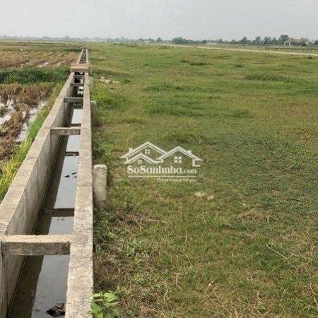 Đất Đẹp Xuân Phong - Huyện Thọ Xuân 175M²- Ảnh 7