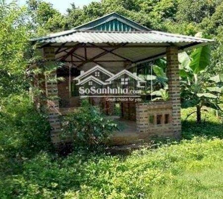 Cần Bán Tuyệt Phẩm 3600M2 Đất Cư Yên, Giá Cực Rẻ, Thích Hợp Làm Nhà Vườn Nghỉ Dưỡng- Ảnh 2