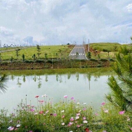 Đất Nền Nghỉ Dưỡng Bảo Lộc - Giá Chỉ Từ 4,5 Triệu/M2, Lợi Nhuận 30%- Ảnh 1