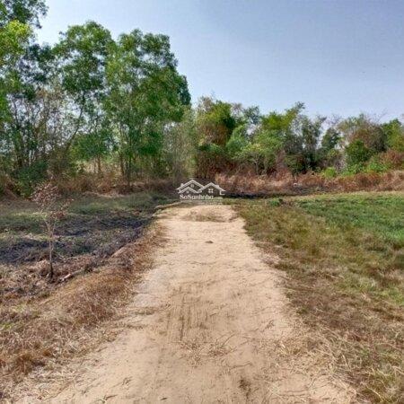 Đất Làm Vườn Giá Rẽ Chỉ Bán Nhanh Cho Khách Thiện Chí Ngay Xã Tân An Hội- Ảnh 2