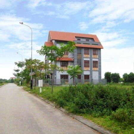 Lô Biệt Thự 185M2 Đường Mạc Đăng Doanh Rộng 68M- Ảnh 3