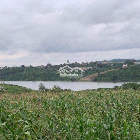 Đất View Hồ Tây Thị Trấn Di Linh- Ảnh 2