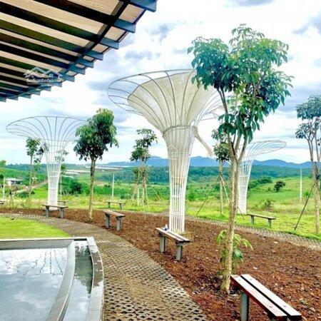 Đất Nền Bảo Lộc Parkhill Chỉ 450 Triệu/100M2 Full Thổ Cư- Ảnh 3