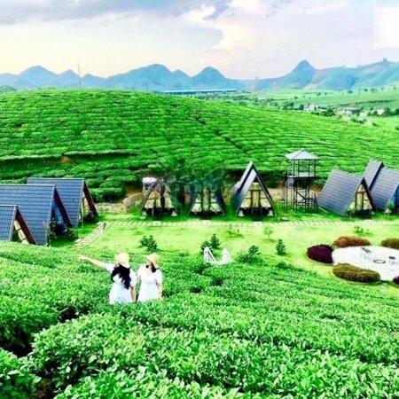 Đất Nền Bảo Lộc Parkhill Chỉ 450 Triệu/100M2 Full Thổ Cư- Ảnh 4
