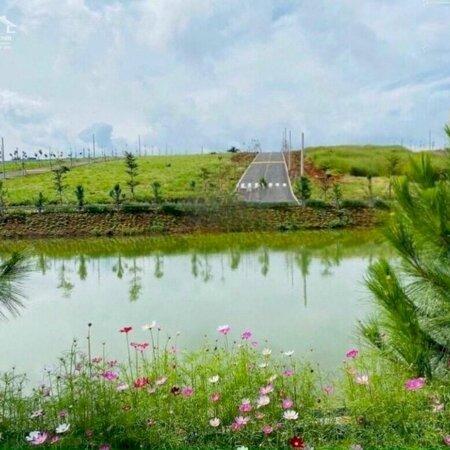 Đất Nền Bảo Lộc Parkhill Chỉ 450 Triệu/100M2 Full Thổ Cư- Ảnh 6