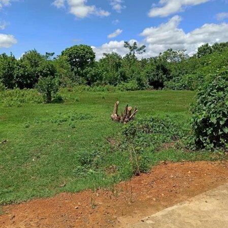 Mở bán 3 lô đất tại Vinh An - Cam Hiếu - Cam Lộ - Quảng Trị - giá chỉ 2xxtr/lô - đầu tư rẻ- Ảnh 4