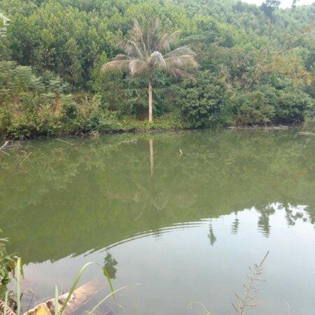 Bán đất Kim Bôi Hòa Bình DT 1,2ha có 400m ont còn lại là đất vườn view đẹp giá 1,6 tỷ- Ảnh 4