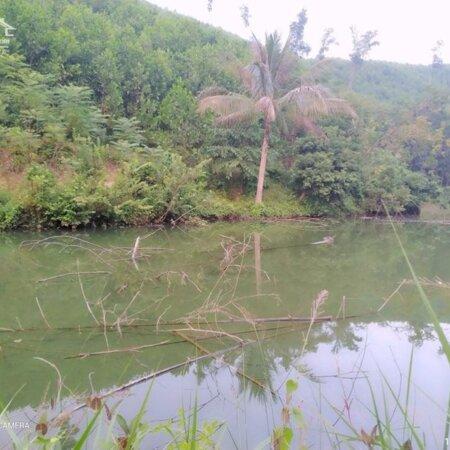 Bán đất Kim Bôi Hòa Bình DT 1,2ha có 400m ont còn lại là đất vườn view đẹp giá 1,6 tỷ- Ảnh 2
