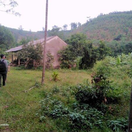Bán đất Kim Bôi Hòa Bình DT 1,2ha có 400m ont còn lại là đất vườn view đẹp giá 1,6 tỷ- Ảnh 3