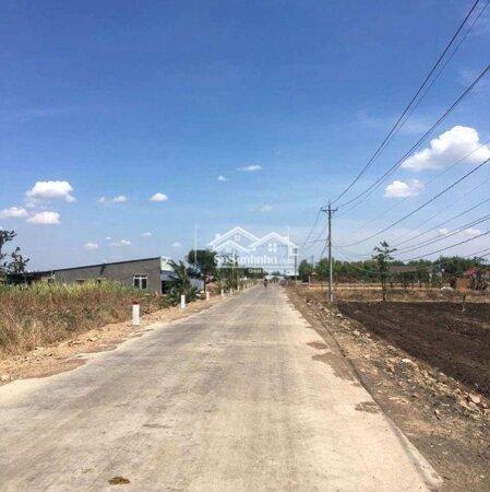 Đất Cẩm Mỹ 1600M Giá 480 Triệu- Ảnh 2