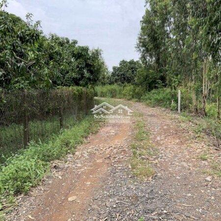 Đất Xã La Ngà, Định Quán, Ngay Ngã Ba Thần Đồng- Ảnh 3