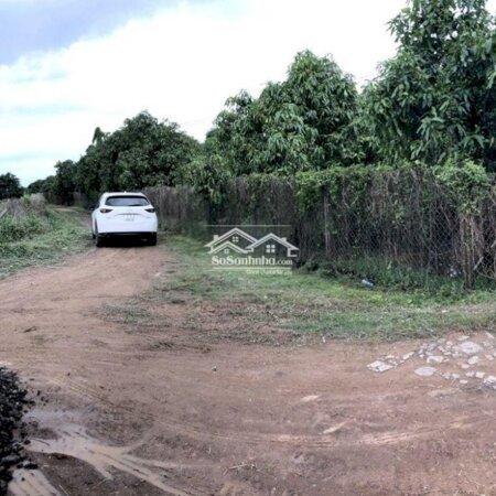 Đất Xã La Ngà, Định Quán, Ngay Ngã Ba Thần Đồng- Ảnh 2