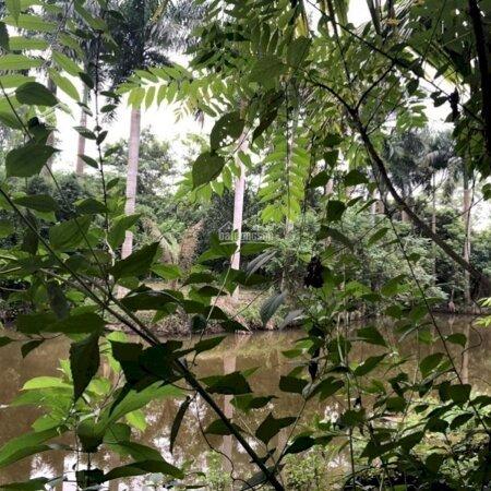 6446M2, Có 200 Đất Ở Tại Thị Trấn Lương Sơn. Đường Xe Tải, Giá Chỉ 1, 5 Triệu/M- Ảnh 1